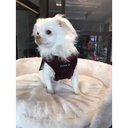 Harig puppia-harnas